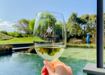 women who wine at steenburg wine estate