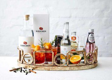 world gin day 2012 and win bloedlemoen gin